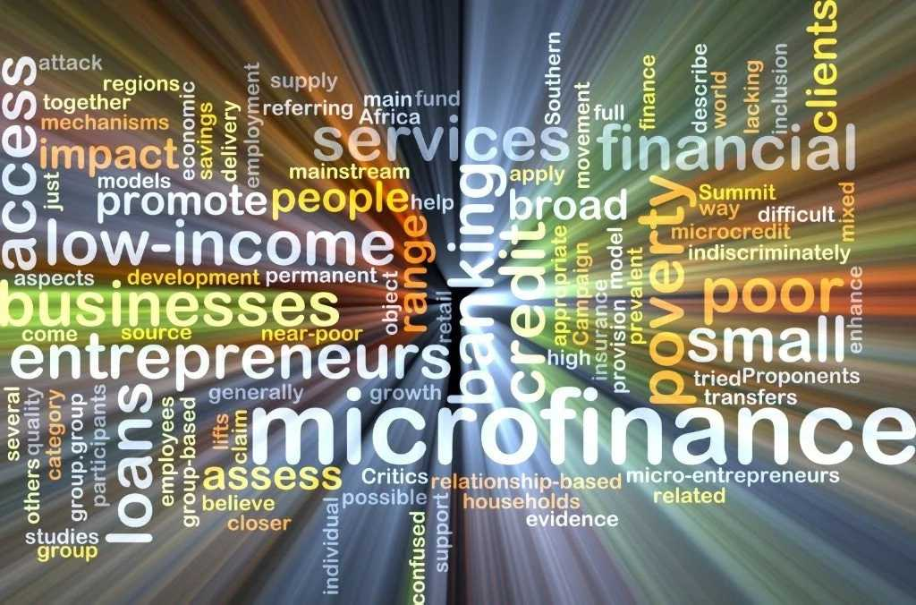 Microfinance Business Model