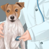Dog Care Tips